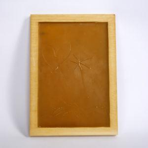 Produkt: Zmazywalna tabliczka woskowa - sklep pasiekasmakulskich.pl