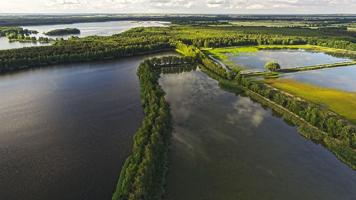 Dolina Baryczy posiada jeden z największych kompleksów stawów rybnych w Europie